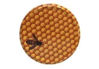 Víčko - včela malovaná