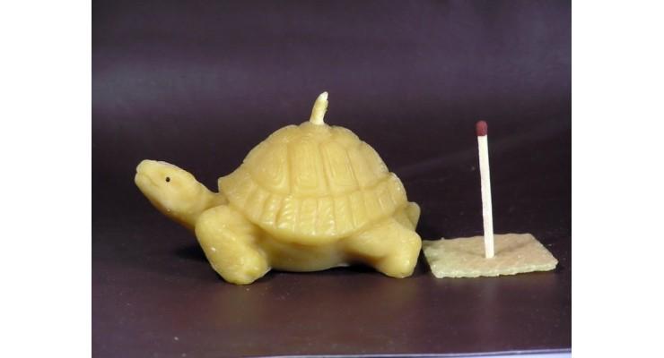 Svíčka ze včelího vosku - želva velká